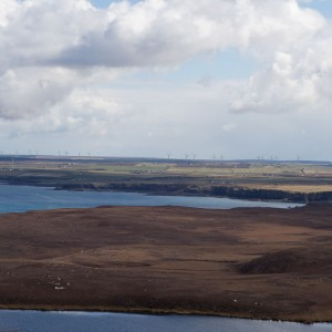 Lyth Wind Farm from Dunnet Head
